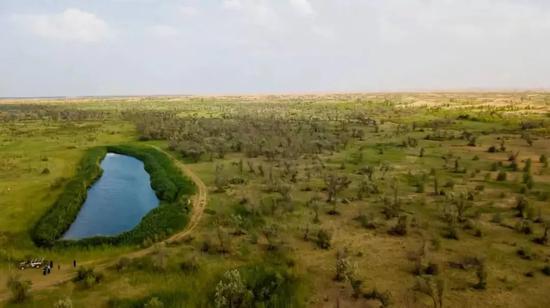 ↑這是內蒙古鄂爾多斯市杭錦旗庫布其沙漠中的生態修復景觀(7月11日無人機拍攝)。新華社記者 彭源 攝